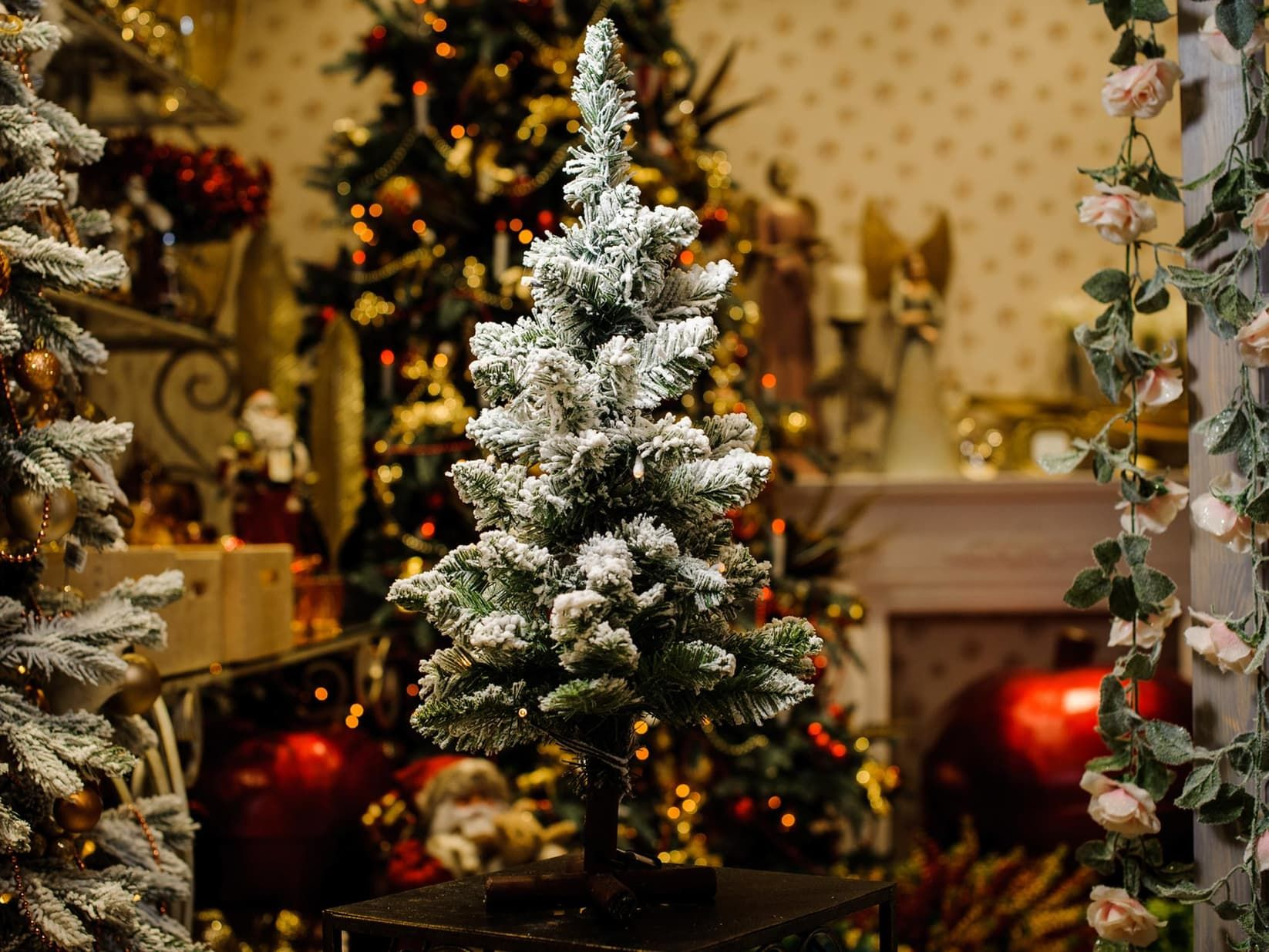 The Pine Trees Silhouette Decors For Christmas Best