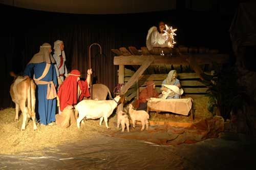 I'd like to see a live nativity scene someday. I wonder if ...