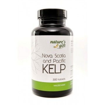 kelp has been validated as a perfect food for those opting for optimal health it is a type of seaweed rich in trace elements beside iodine kelp