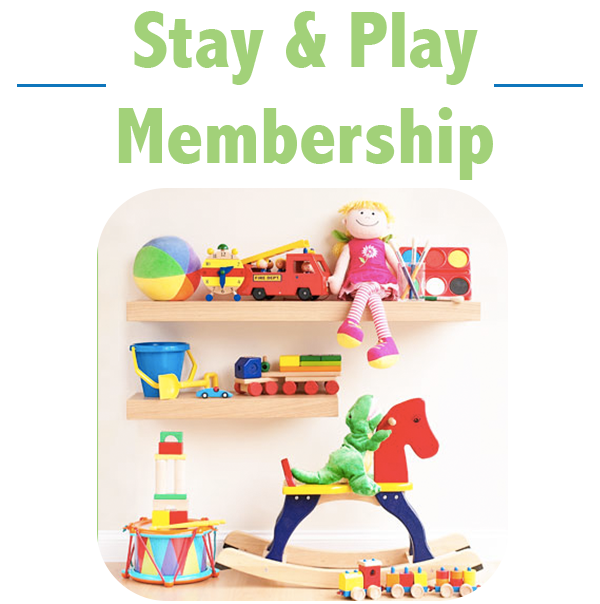 Check out toys AND come play in the store for free!