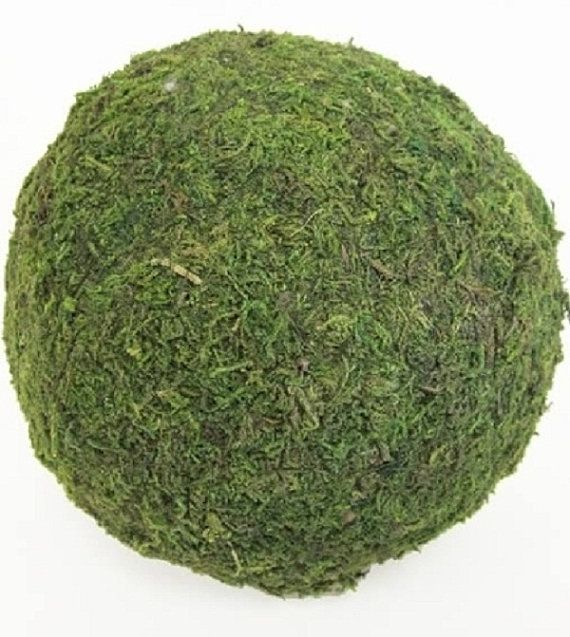 """13 Lush Spring Wedding Decorations To Bring To Life Your: 6 Moss Balls (2"""" Round)"""