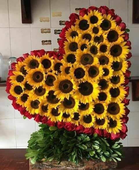 Arreglos Sunflower Arrangements Dandelion Plant Sunflower Hearts