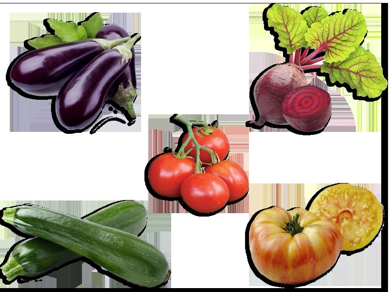 Les fiches légumes du petit potager Potager, Jardin potager