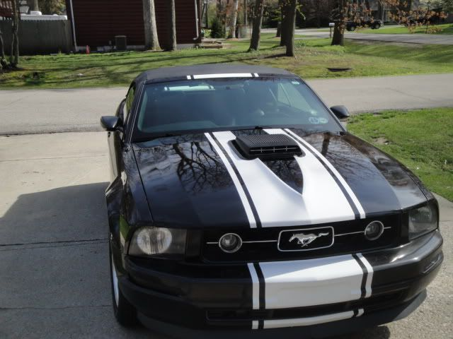 A 2006 2009 Pony Package V6 With A Shaker Hood Yeah I Would Do