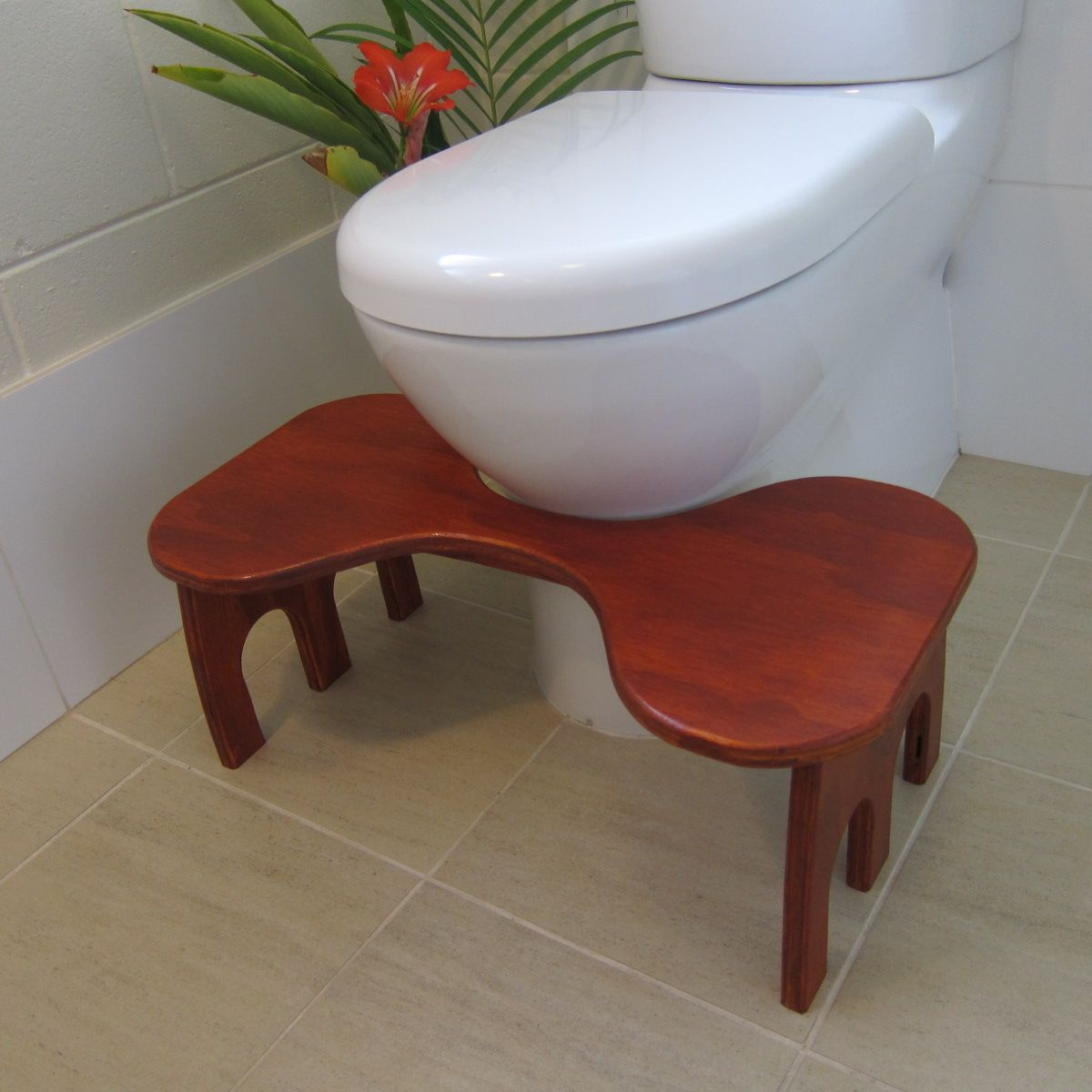 Easy Diy Squatty Potty: Toilet Stool In Position