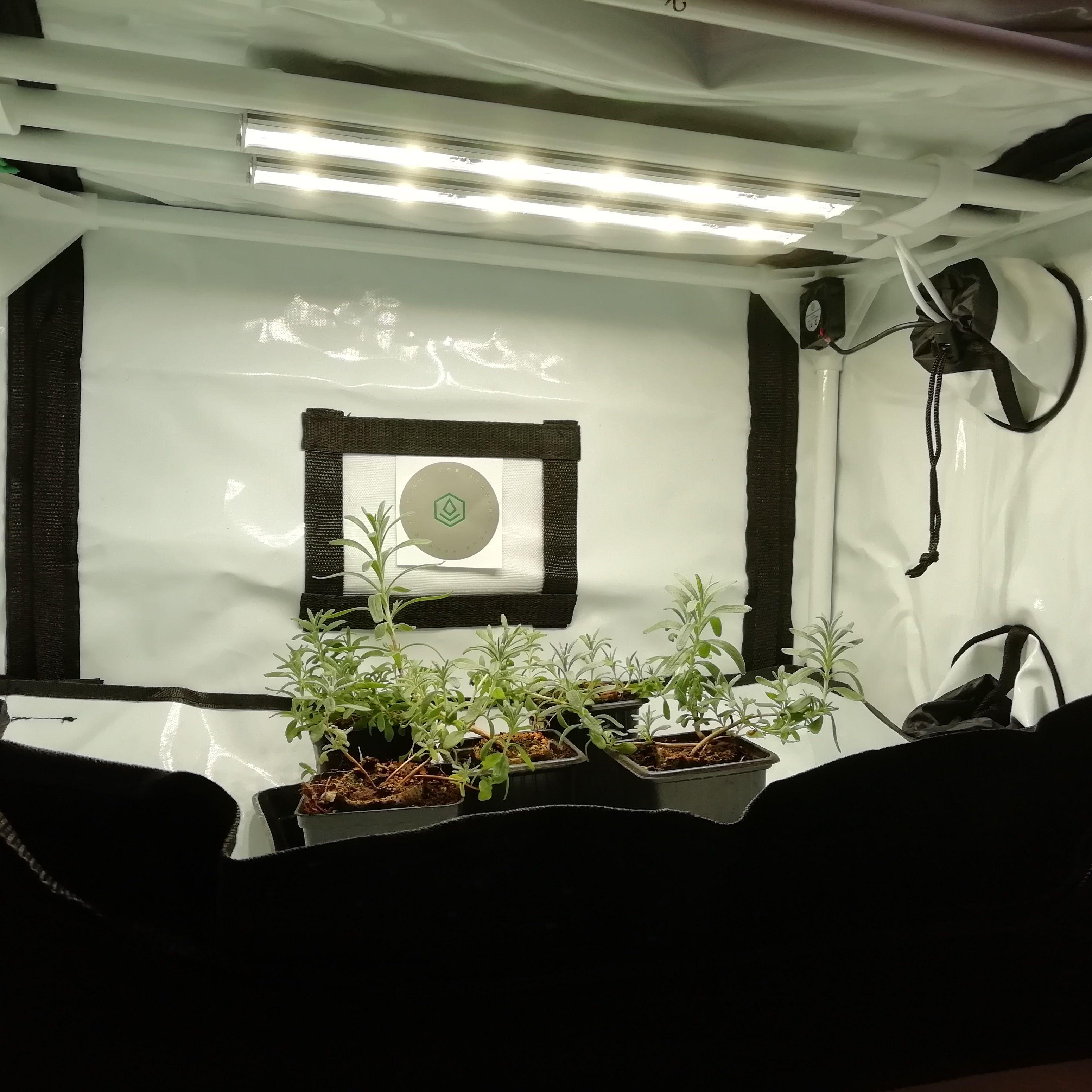 Fytobase V60 Profi Anzuchtzelt Fur Pflanzen Mit Led 30w Beleuchtung Zimmergewachshaus Pflanzen Gewachs