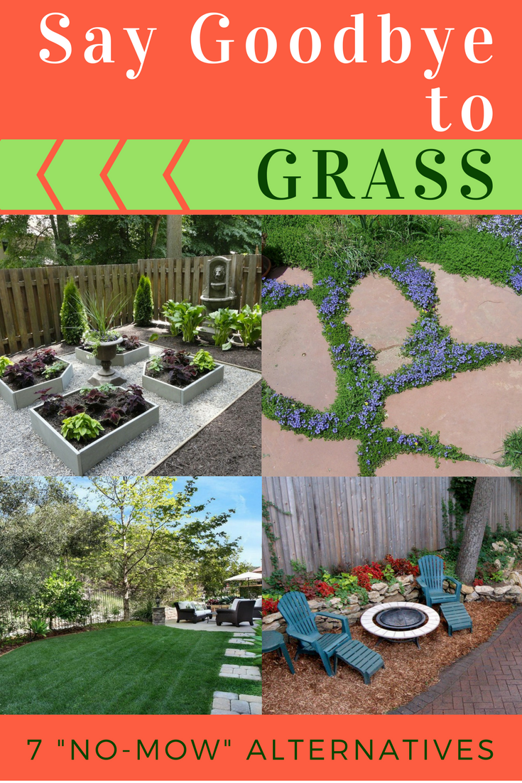 Goodbye Grass 13 Inspiring Ideas For A No Mow Backyard Backyard Grass Landscaping Lawn Alternatives Backyard Grass Alternative