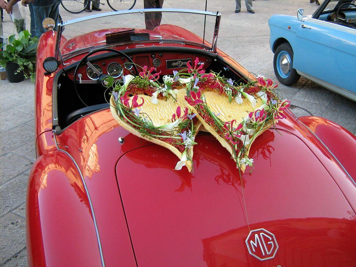 GiuseppeAntonioFerraro | Hearts Hearts Everywhere | Pinterest ...
