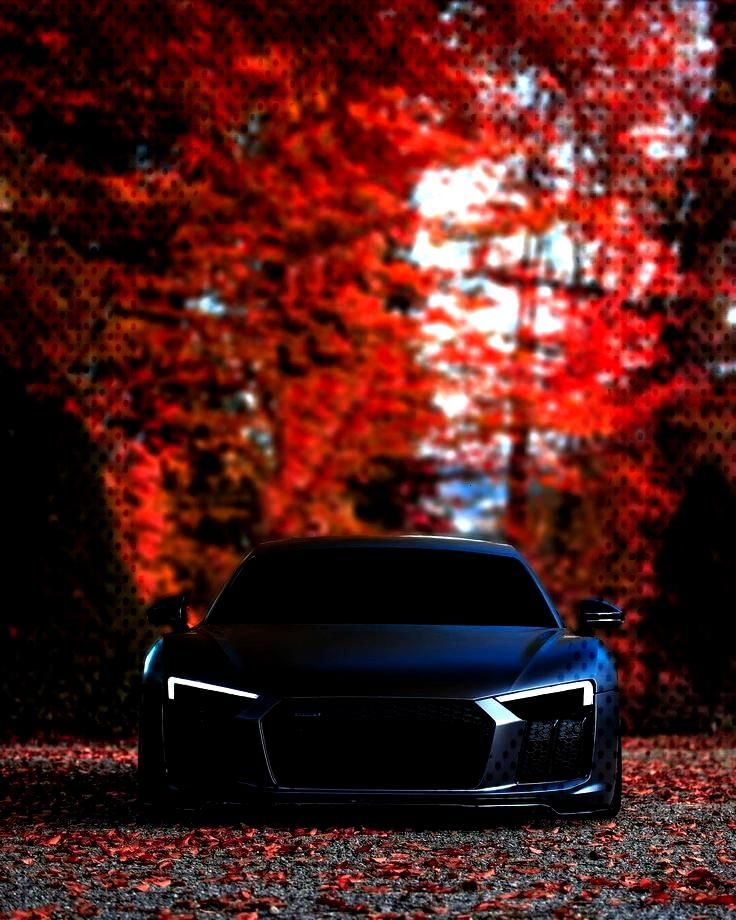 autumn with this beast is such a pleasure. @signorino__ - Audi Photos autumn with this beast is suc