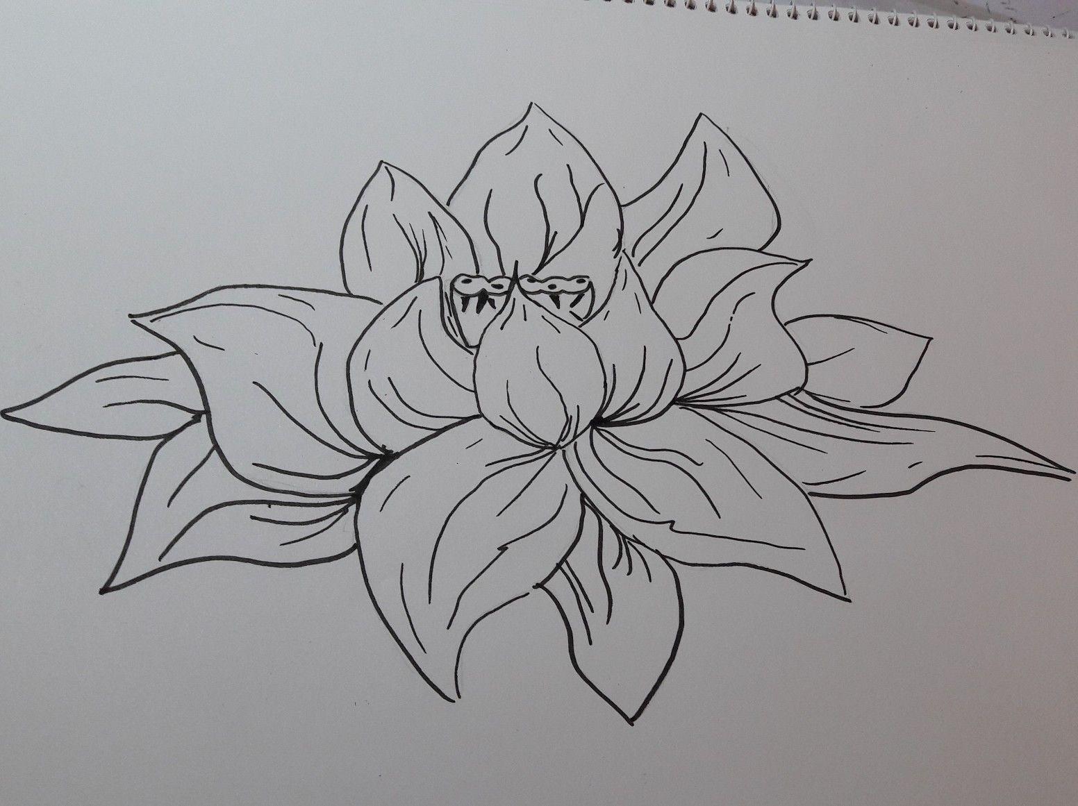pinissy on zeichnungen  doodle art moose art art
