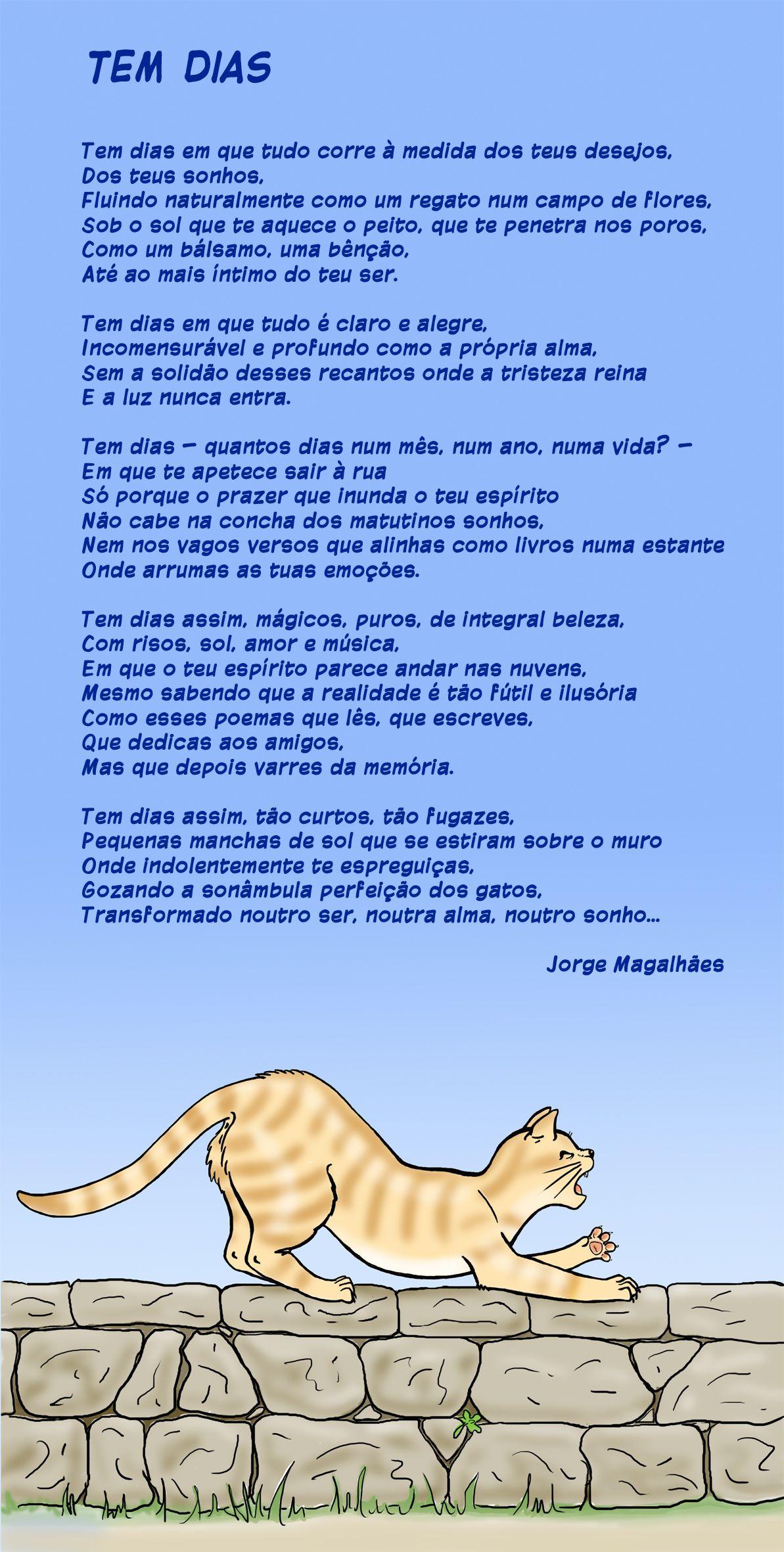 Poesia Felina Poema Poesia Frases Animais Felino