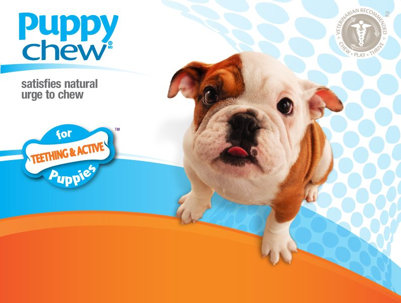 Puppy Chew By Nyla Bone Made In The Usa Puppy Chewing Puppies