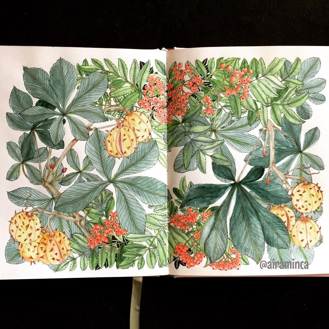 This was not that much of a struggle to finish. Spent only 3 hours this time around. #thefloweryear #leiladuly #gansaitambiwatercolor #aquarelle #rowanberry #horsechestnut #botanicalart #adultcoloringbook #coloring #creativelycoloring #wonderfulcoloring #coloringforgrownups #artecomoterapia #coloring_secrets #beautifulcoloring #adultcolouring #boracolorirtop #majesticcoloring #coloriage #bayan_boyan #colorindolivrostop #kolorowanka #desenhoscolorir #mycreativeescape #artoftheday #大人の塗り絵…