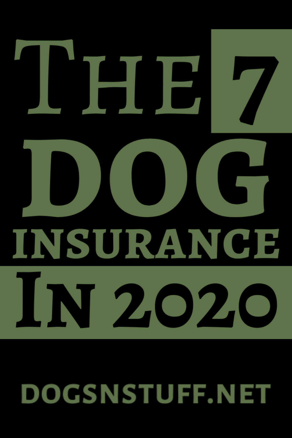 How to Find the Best Dog Insurance Dogs N' Stuff in 2020