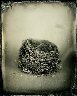 Susan Seubert- I took a workshop from her once on how to make these modern tintypes. Believe me it's not easy! I love Susan's spare, but powerful aesthetic.