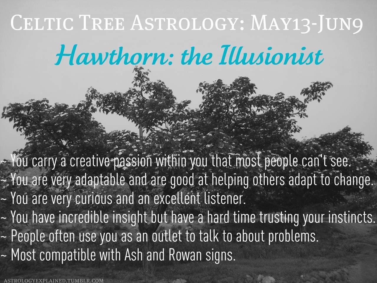 Celtic horoscope: compatibility of trees on the horoscope of druids