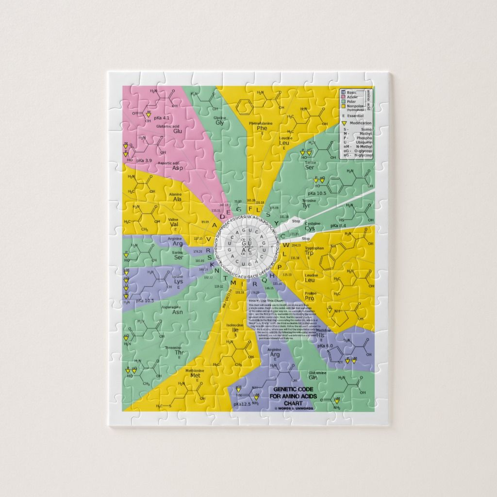 Genetic Code For Amino Acids Chart Wheel Jigsaw Puzzle