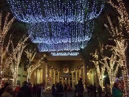 Christmas Downtown Naples Florida Florida Christmas Naples Florida Florida Living