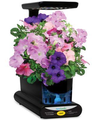 Aerogarden Cascading Petunias 3 Pod Refill Kit Herb 400 x 300
