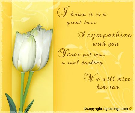 Sympathy Cards-61 Cards \ Words for Cards Pinterest - condolence template