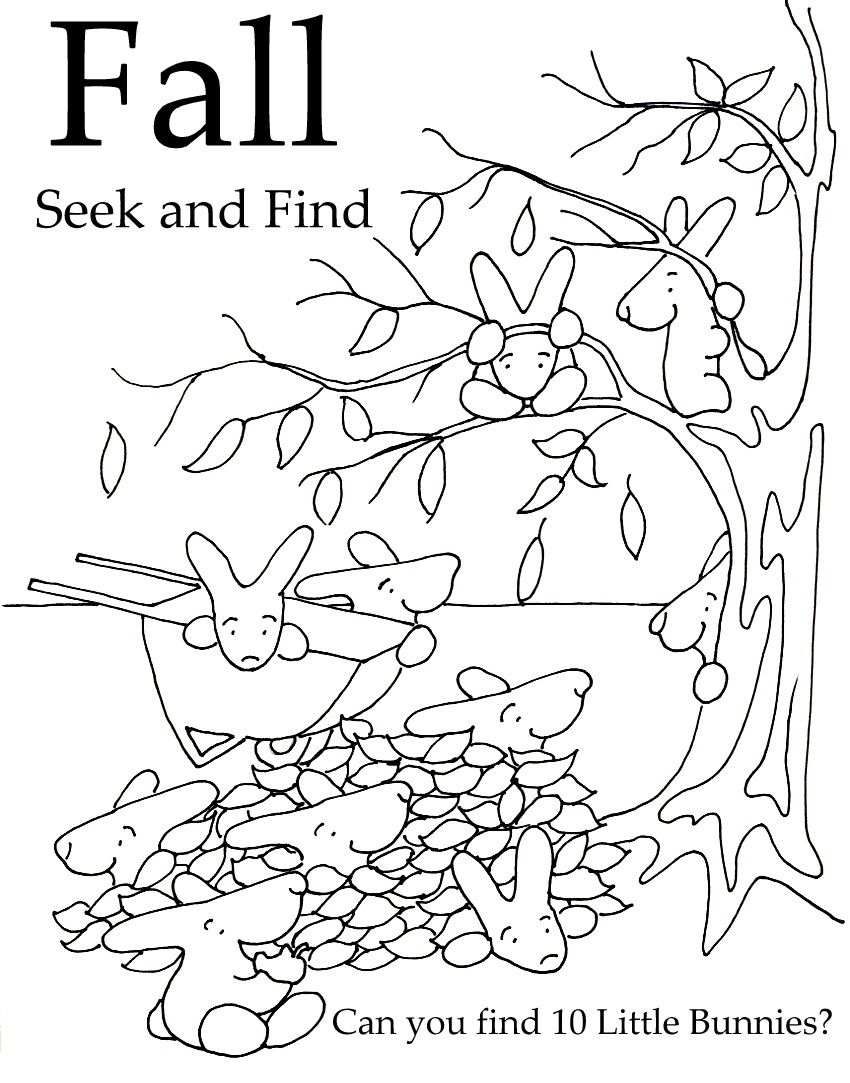 Seek and Finds