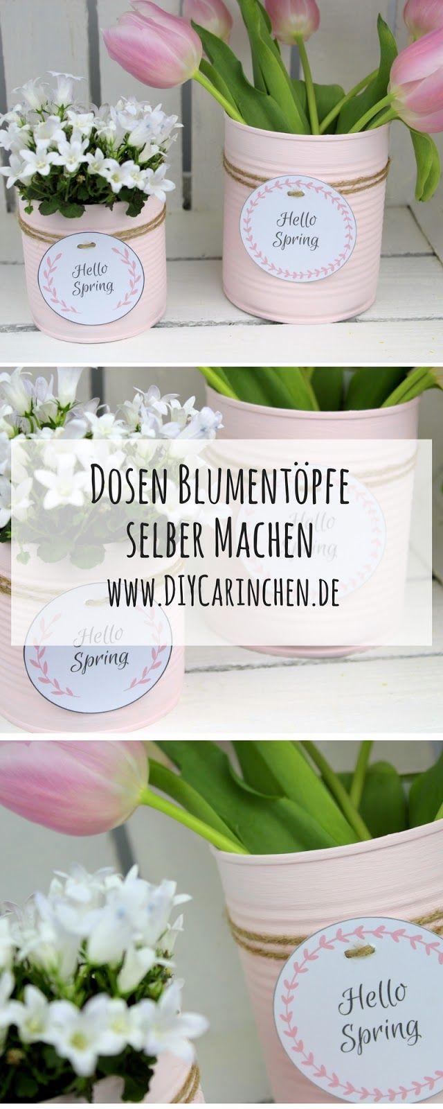 Photo of Gjenvinning av DIY Bastelidee: Blumentopf aus einer Konservendose basteln