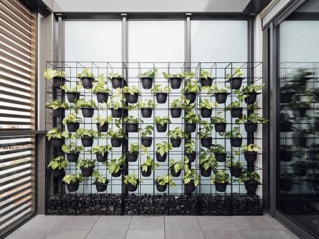 () Our Range Of Vertical Garden Screens Are Designed And Made In Melbourne  To An Architectural Standard From Pre Galvanised Wire With Zincalume  Components.