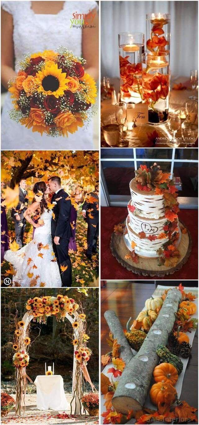 Fall outside wedding decoration ideas  Fall Wedding Ideas  Wedding Stuff  Pinterest  Fall Wedding