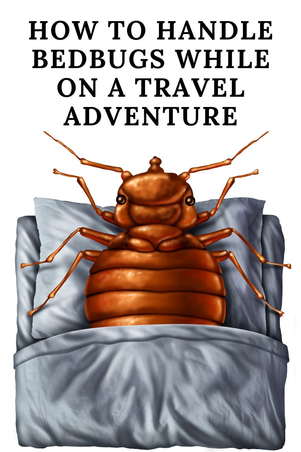 How to Handle Bedbugs While on a Travel Adventure in 2020