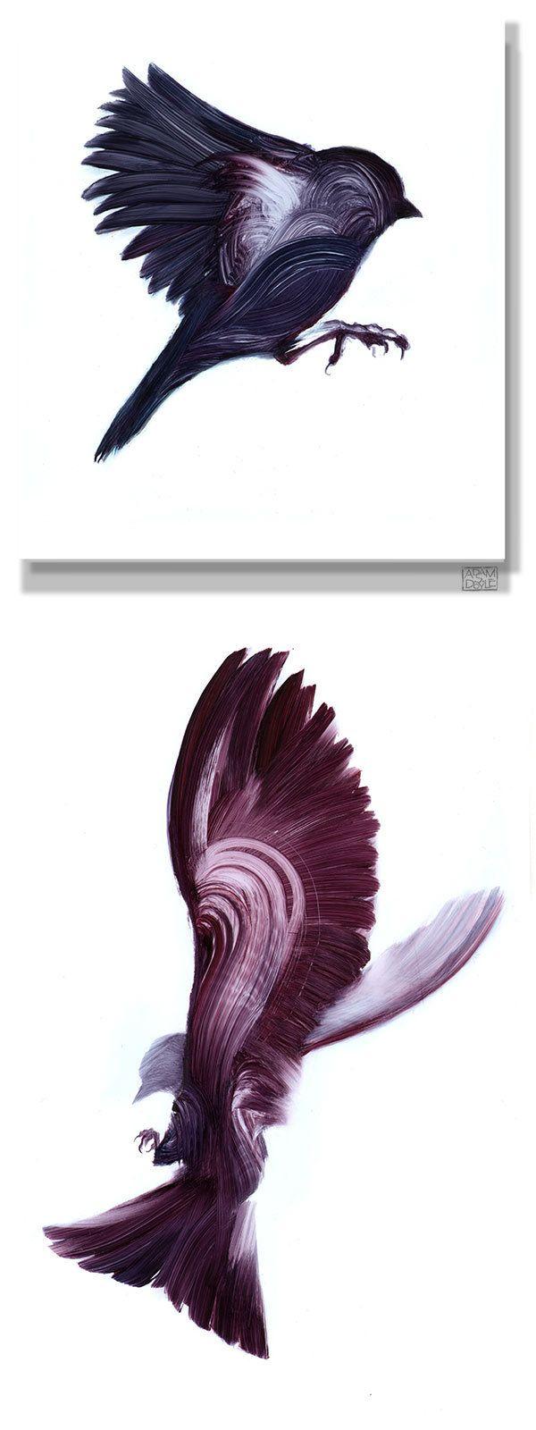 Photo of 50 graphic and original illustrations around the bird