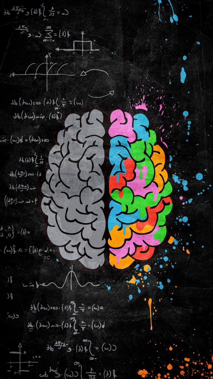 Creative Brain iPhone Wallpaper with 900x1600 Resolution