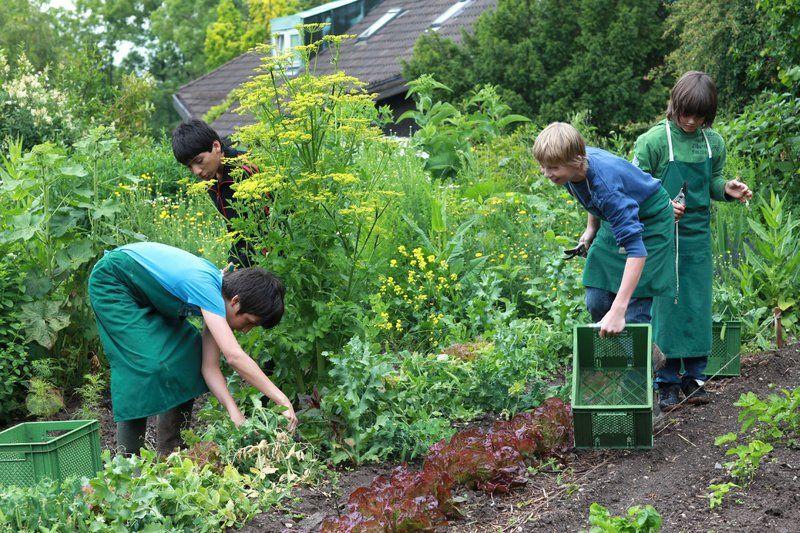 16 Waldorf Gartengestaltung Garten Landschaftsbau Landschaftsbau Gartenbau