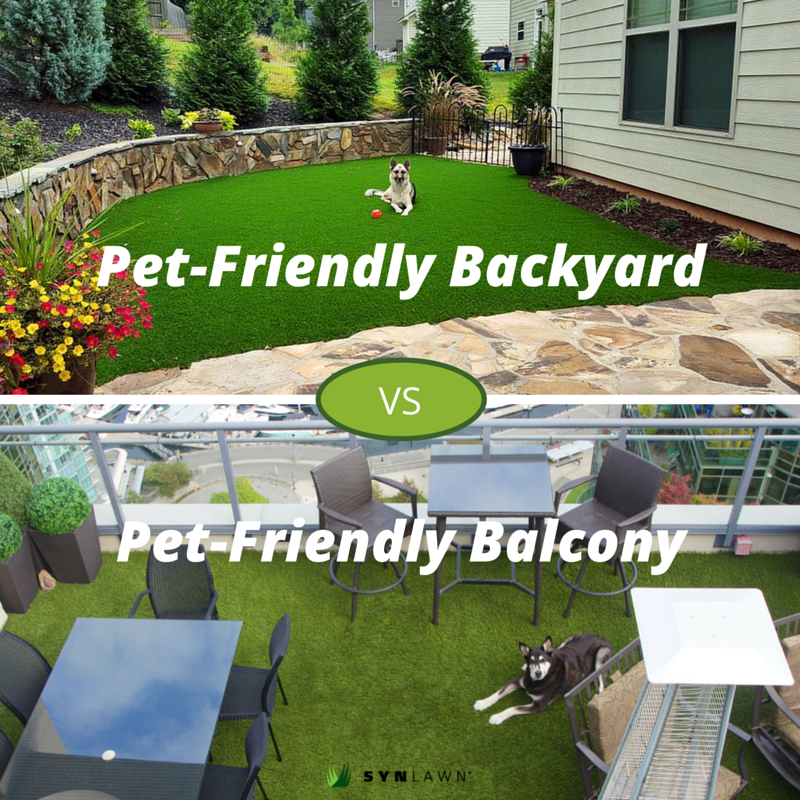 Dog Pet Products Pet Friendly Backyard Dog Friendly Backyard Balcony For Dogs