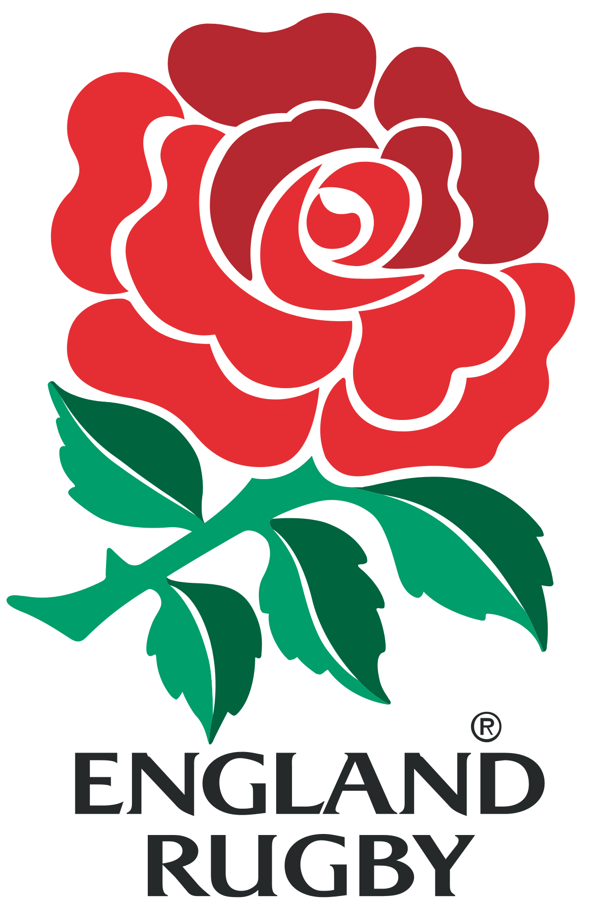 England Rugby Emblem Rose And Shield Google Search Rugby Wallpaper England Rugby Union Rugby Logo