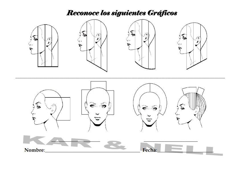 blank head sheet diagram for cutting hair