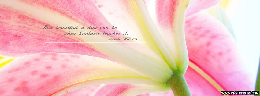 How Beautiful A Day Can Be Facebook Cover - PageCovers.com | 8093 ...