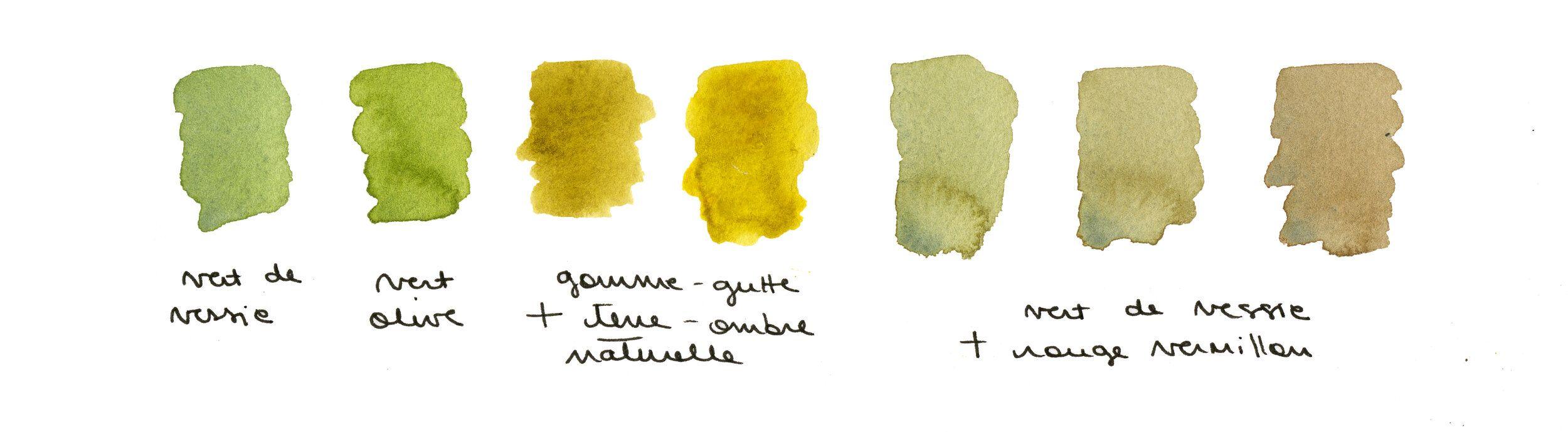 Palette De Couleurs Automnales Inspiree Par La Foret Aquarelle