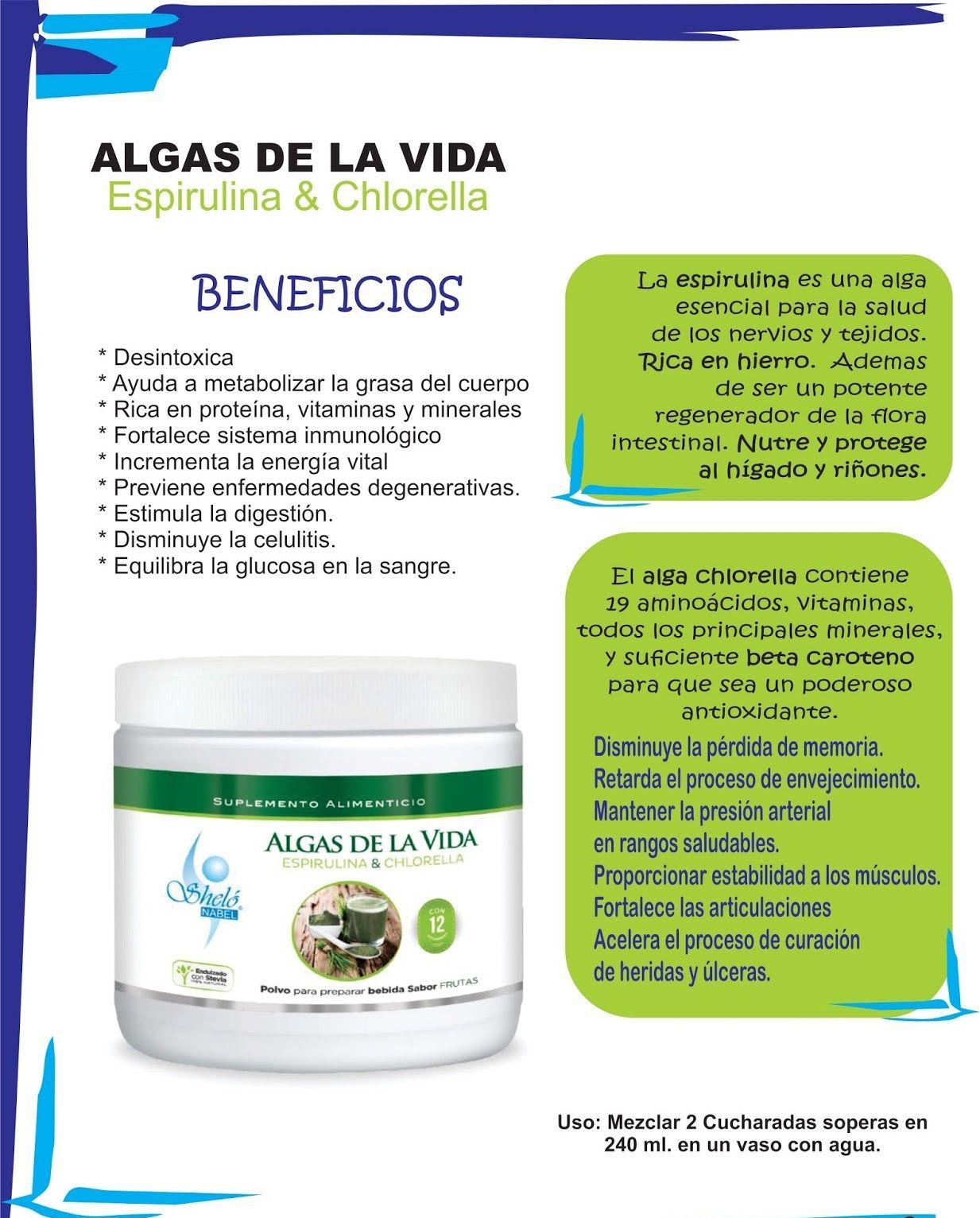 Algas De La Vida Spirulina Y Chlorella Espirulina Alga