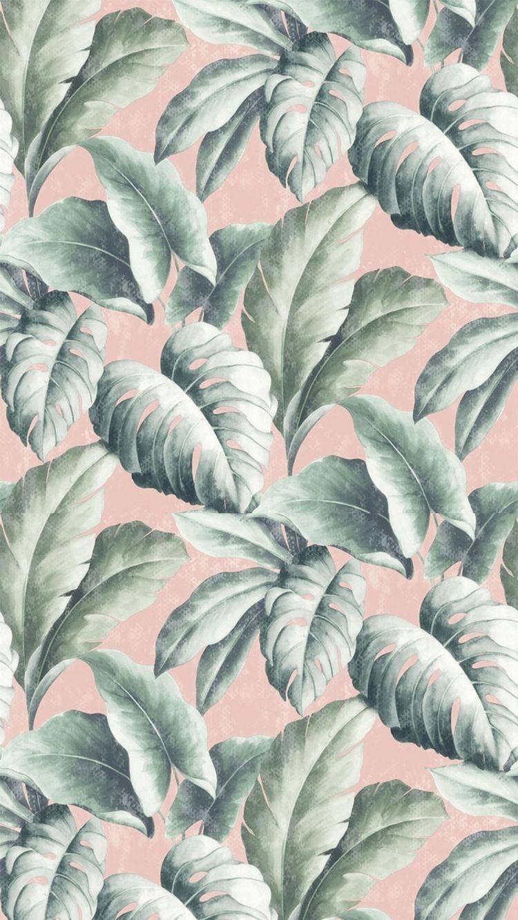 Feuille Florale Tropicale Wallpapers Paisagens Papel De Parede