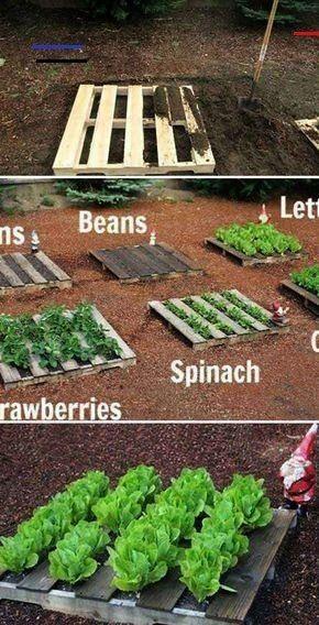 Gemüsegarten  25 gepflegte Gartenprojekte mit Holzpaletten  Easy DIY Garden  wood workin diy Holzpalette Gemüsegarten  25 gepflegte Gartenprojekte mit Holzpalet...