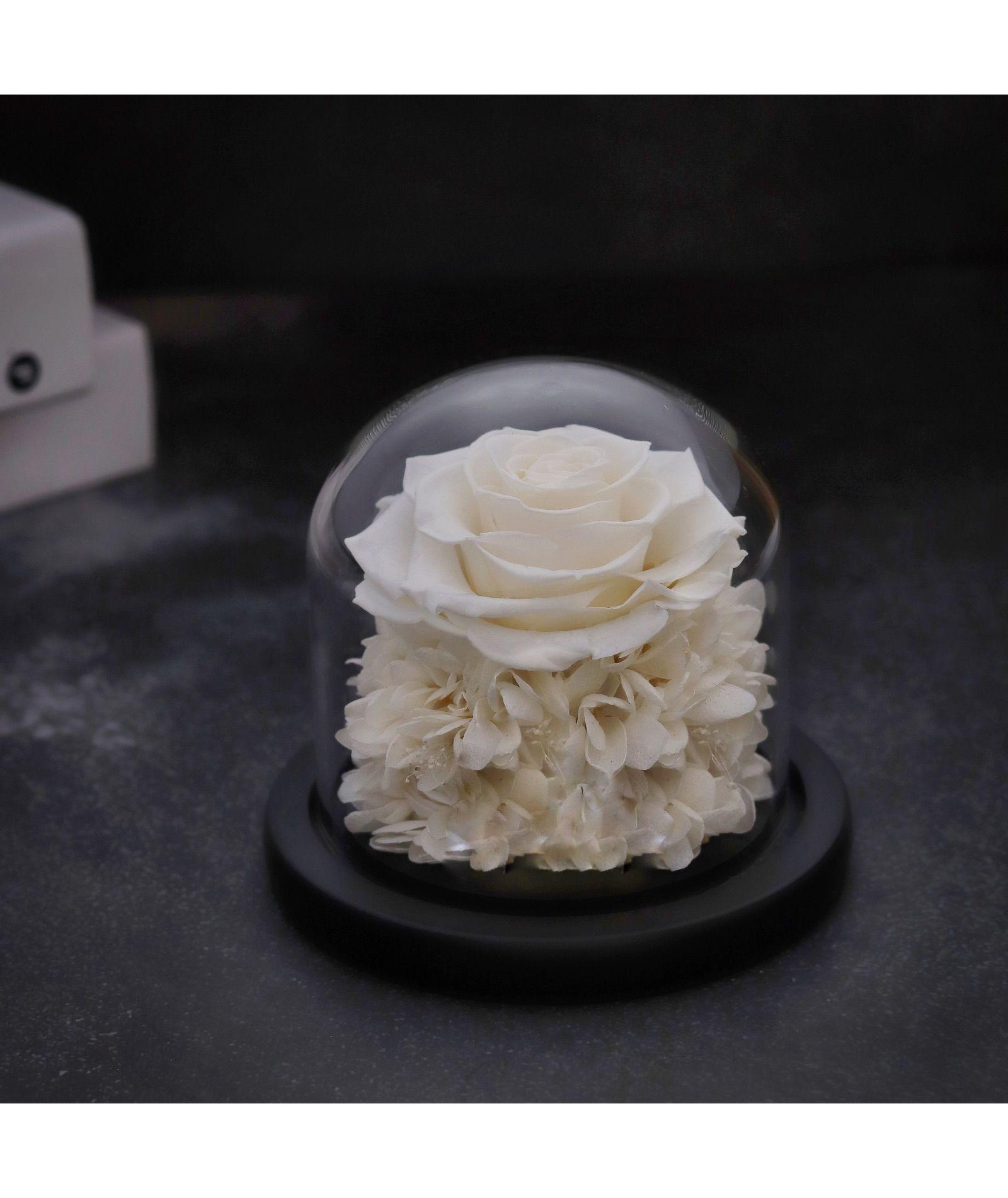 ورد طبيعى ابيض دايم ايلوبا روزز داخل فازة زجاجية Desserts Cake