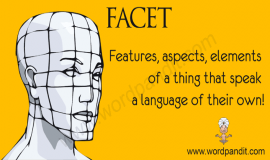 another word for facet