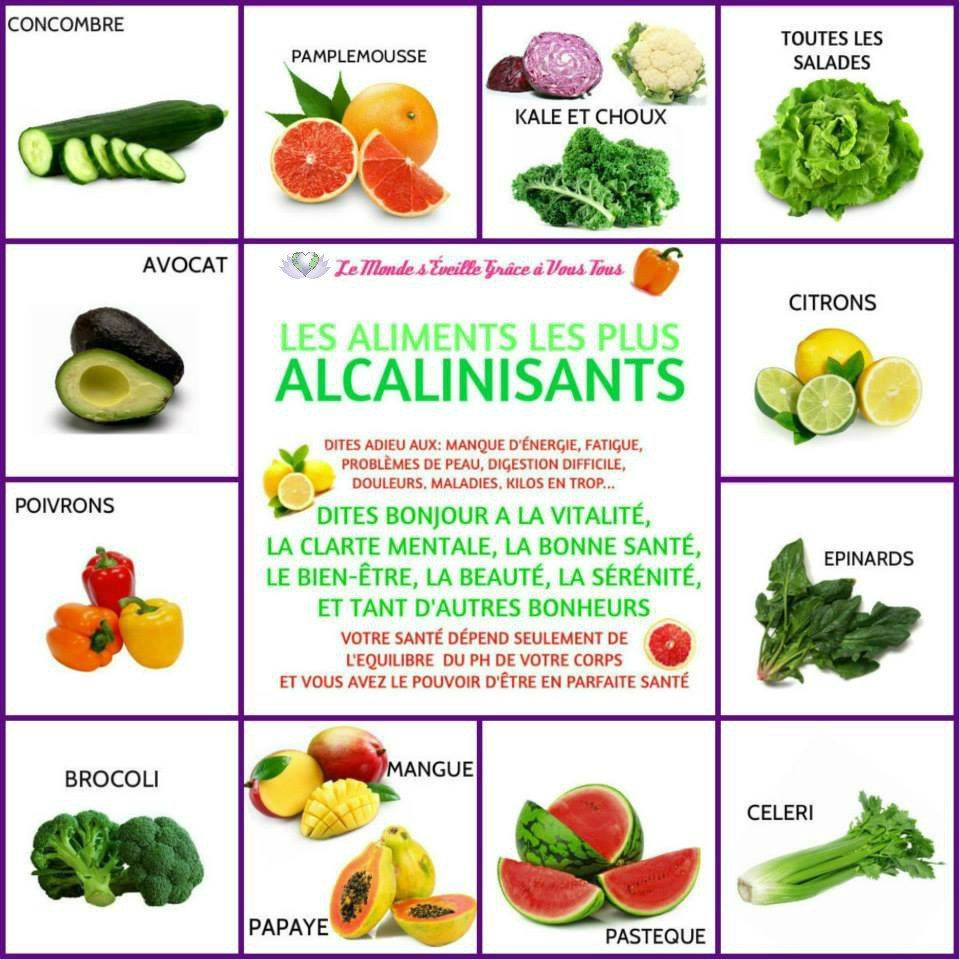 Les aliments les plus alcalinisants concombre - Aliments les plus caloriques ...