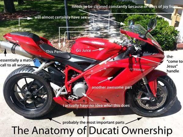 The Anatomy Of Ducati Ownership Motorcycle Hot Bikes Ducati