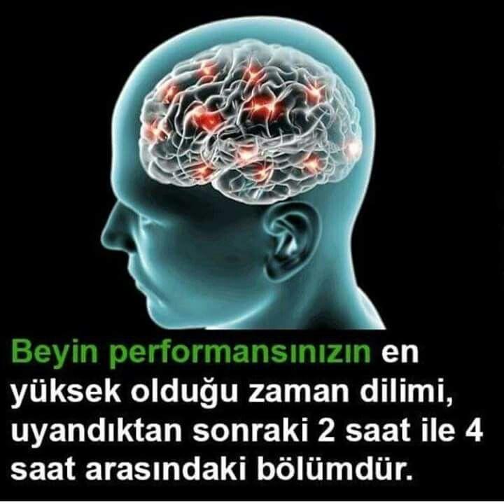 Bilgi Hatice Pala Bilgi Psikoloji Saglik