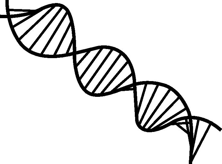 Dna Strands Dna Design Dna Logo Planner Logo Design