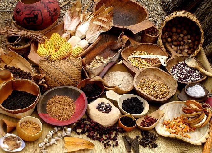 Eastern Woodland Indians Food | Native American Eastern Woodlands ...