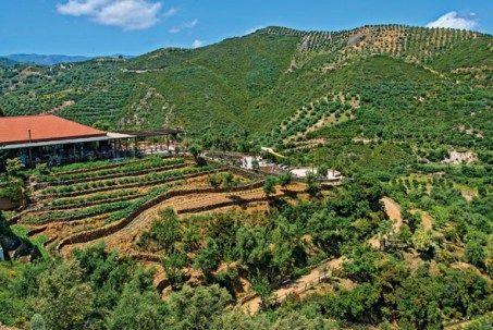 The Botanical Park & Gardens of Crete | Crete, Botanical, Botanical gardens