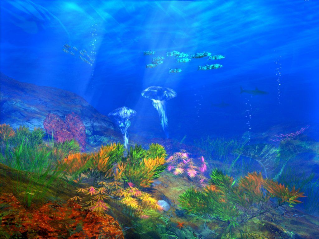 Download The Free Under Sea Wallpaper