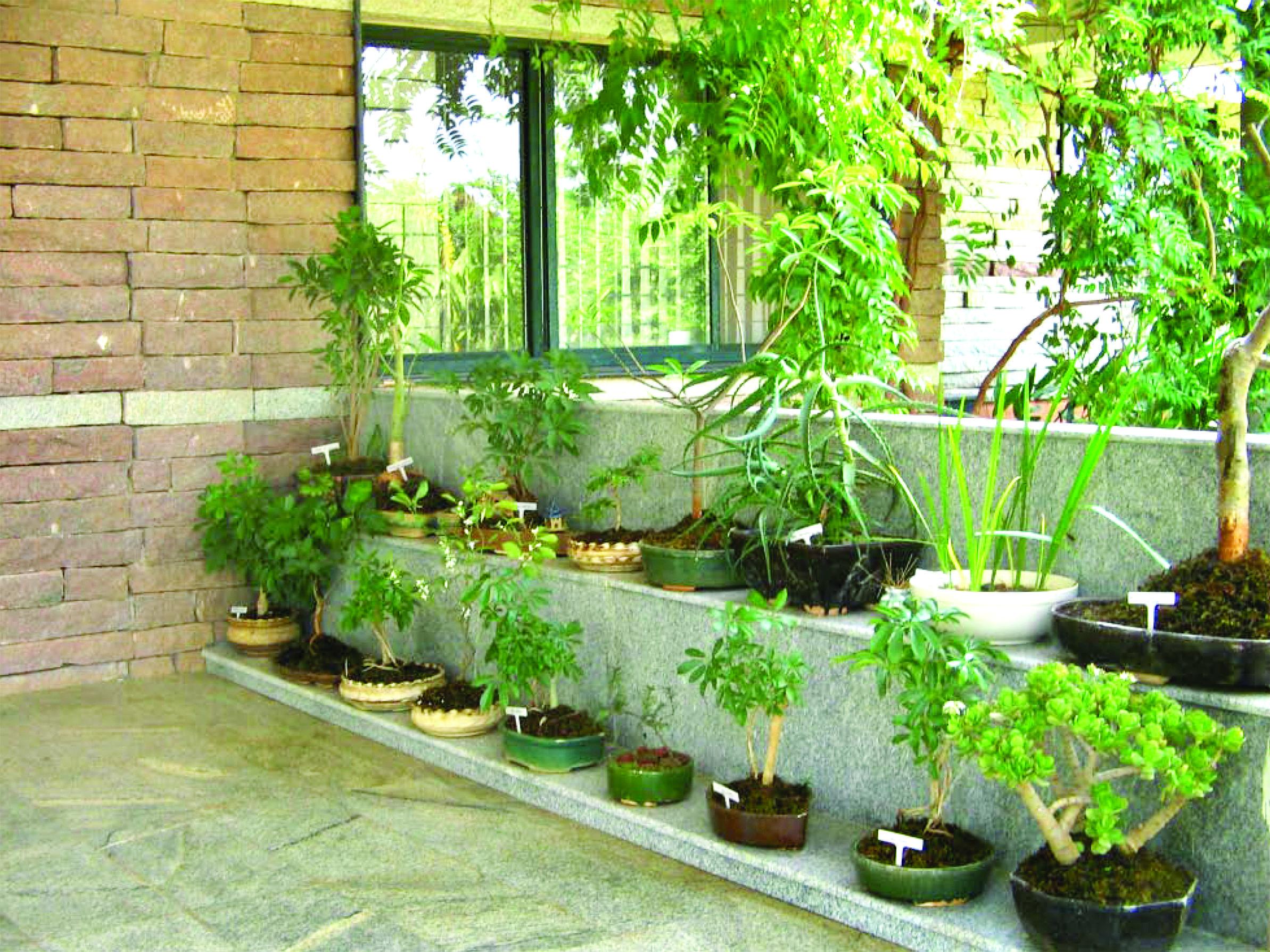 Herbal gardens for urban homes organic gardening for Eco indoor garden house